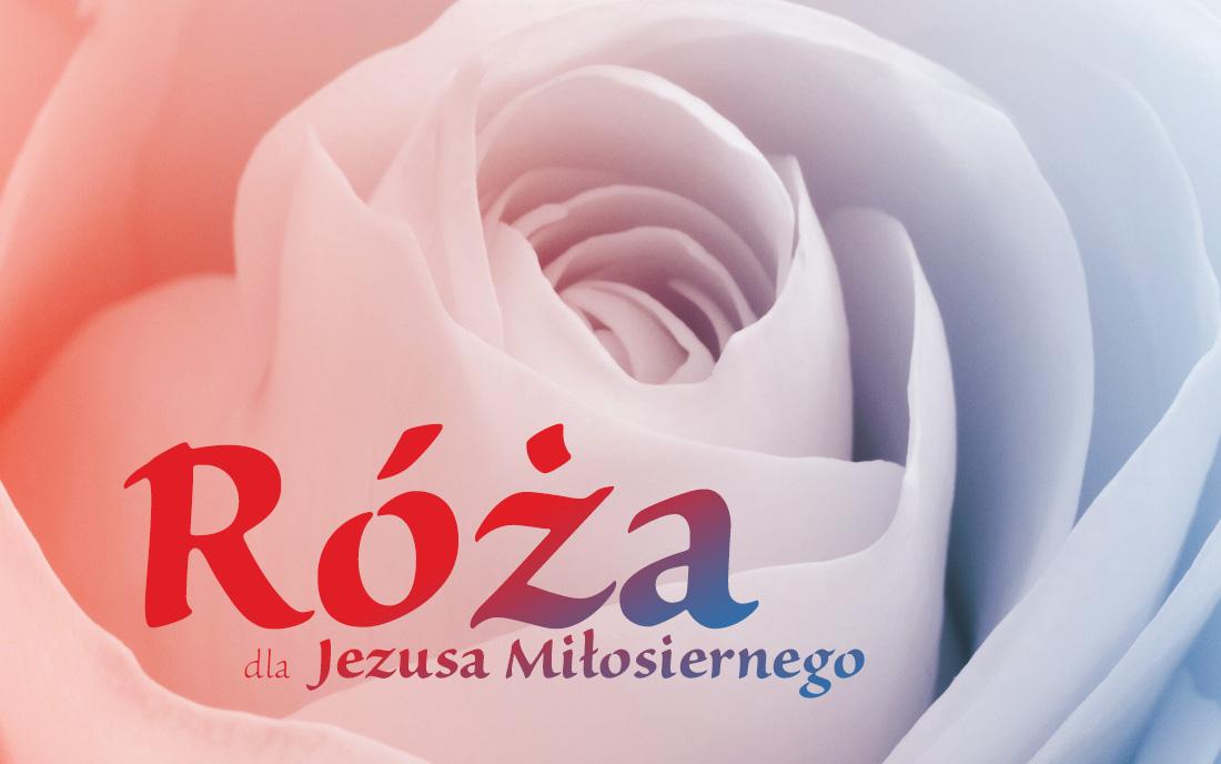 Róża dla Jezusa Miłosiernego