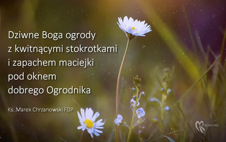Dziwne Boga Ogrody - ks. Marek Chrzanowski FDP