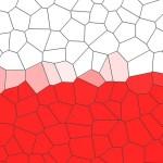 Polska flaga mozaika