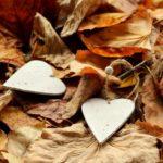 Serca i liście